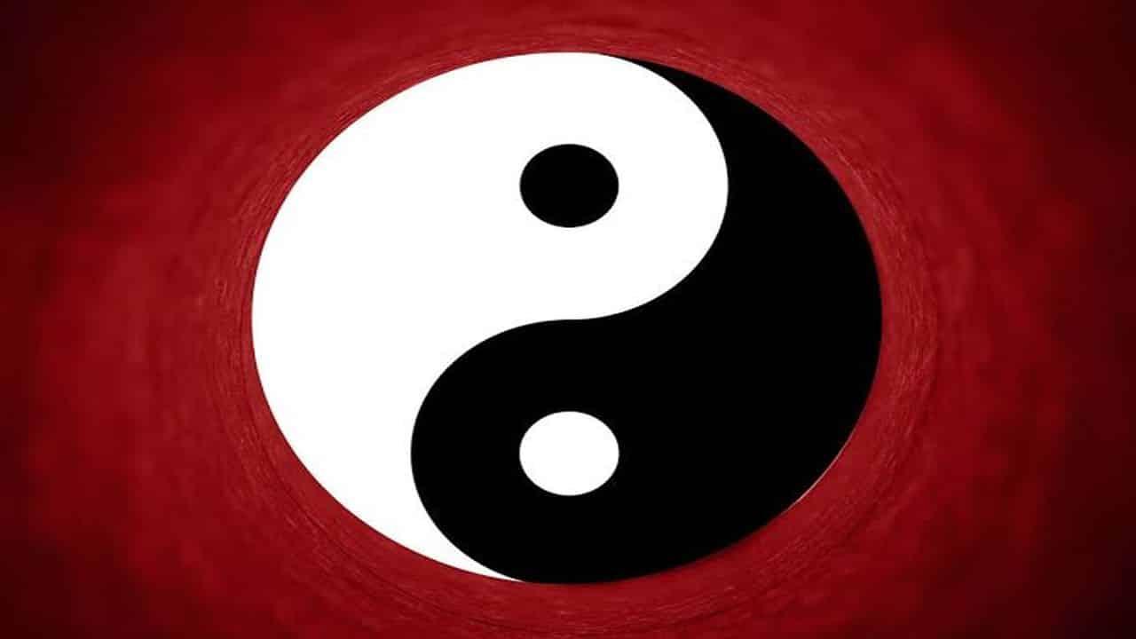 yin yang para nick